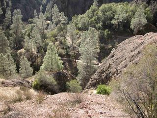 Pinnacles trail two