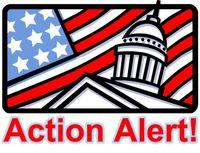 Action Alert!